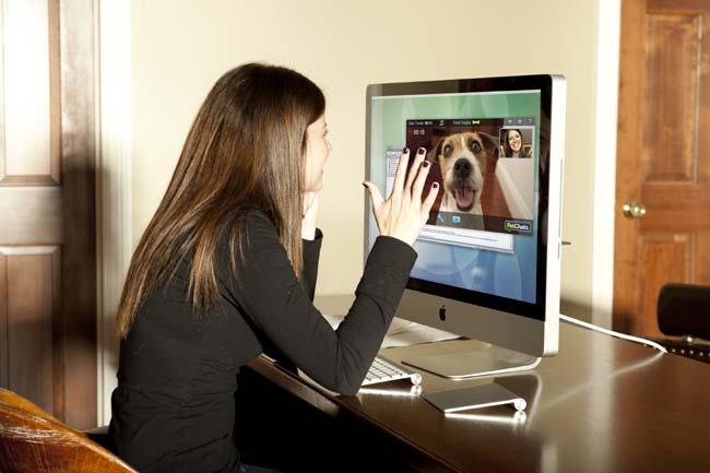 20130425__PetChatz_petcam_dog