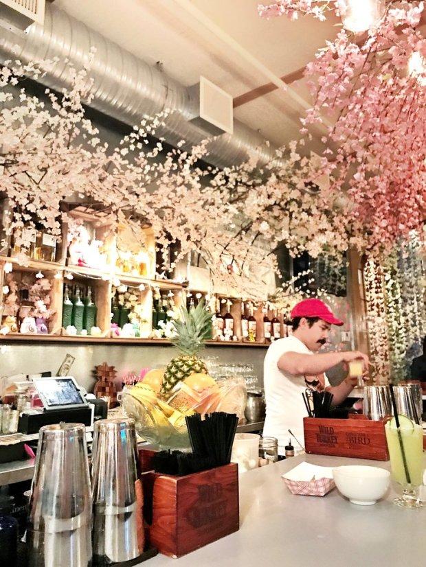 DC pop up bar mario bros cherry blossom theme